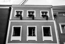 Passau White