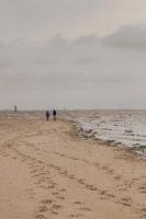High Tide 4